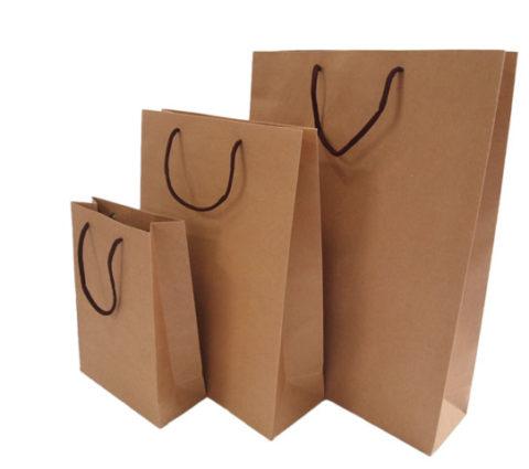 FG-114-Paper-Bag-480x425