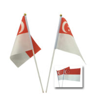 FG-832 Mini Singapore Flag