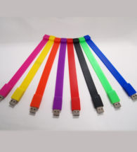 Flash Drive (WristBand)