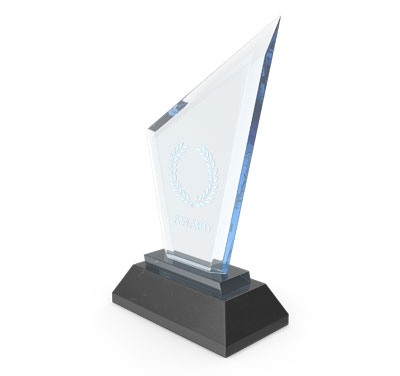 trophy as a custom corporate gift
